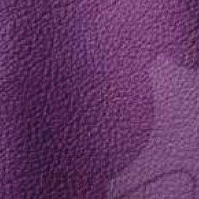 Purple 451